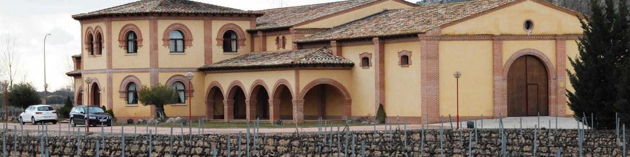 Bodegas y Viñedos Vega Real