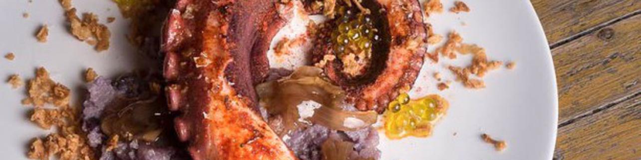 Ostrea Gastro