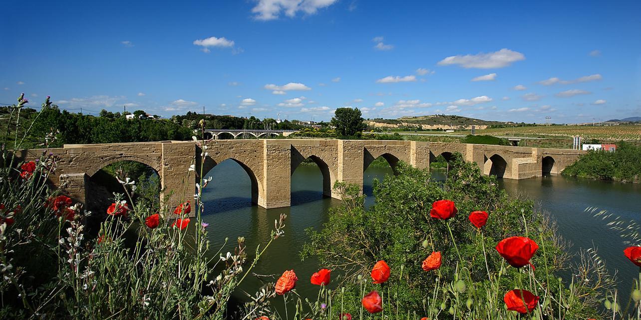 Puente de Briñas | Guía Repsol