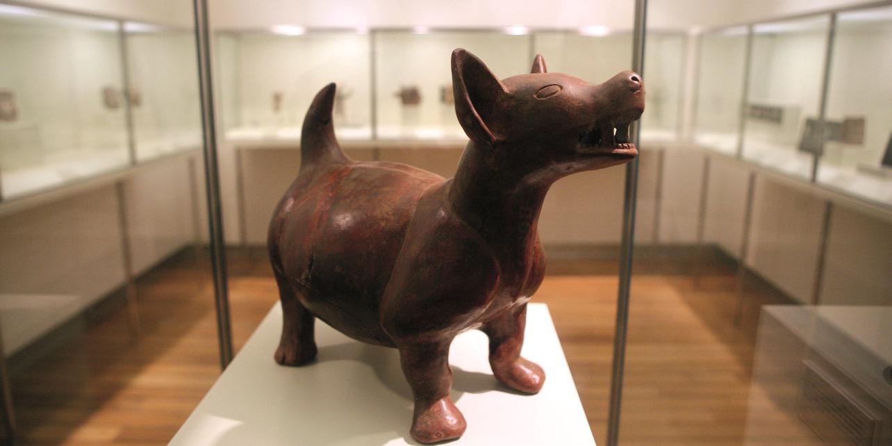 Museo Precolombino Felipe Orlando