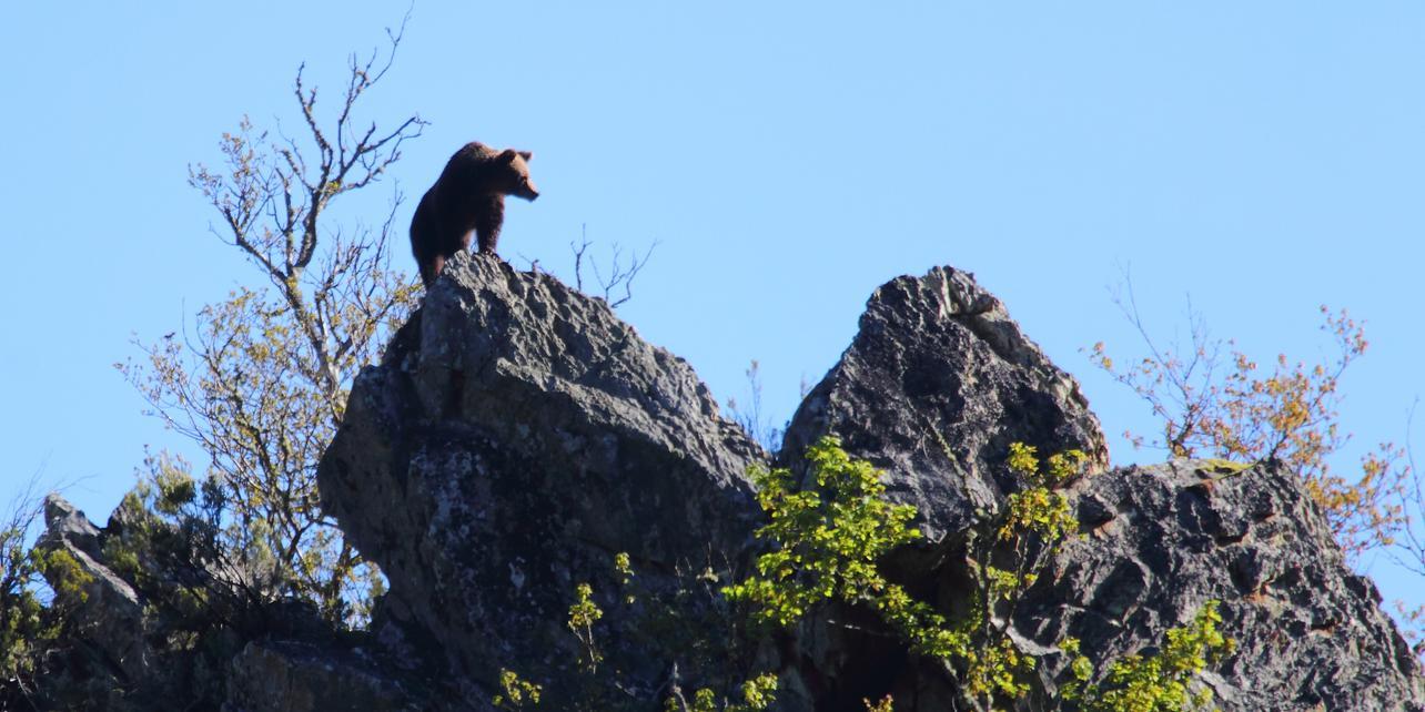 Parque Natural de las Fuentes