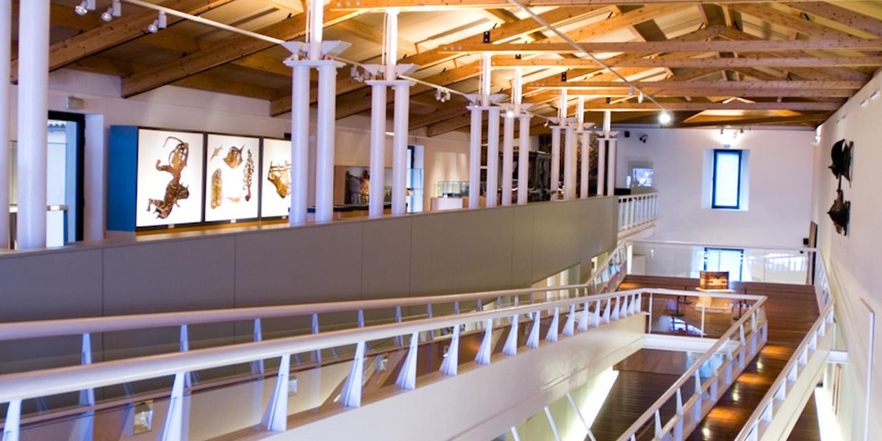 Museo de l'art della Pel