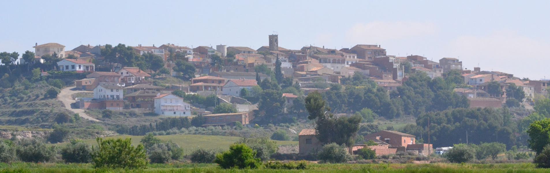 Bellmunt d'Urgell