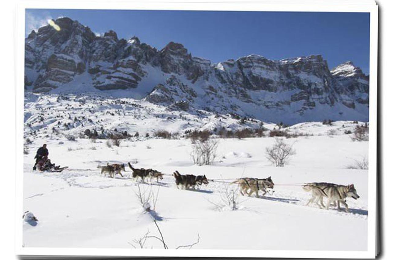 Mushing activo en el valle de Tena