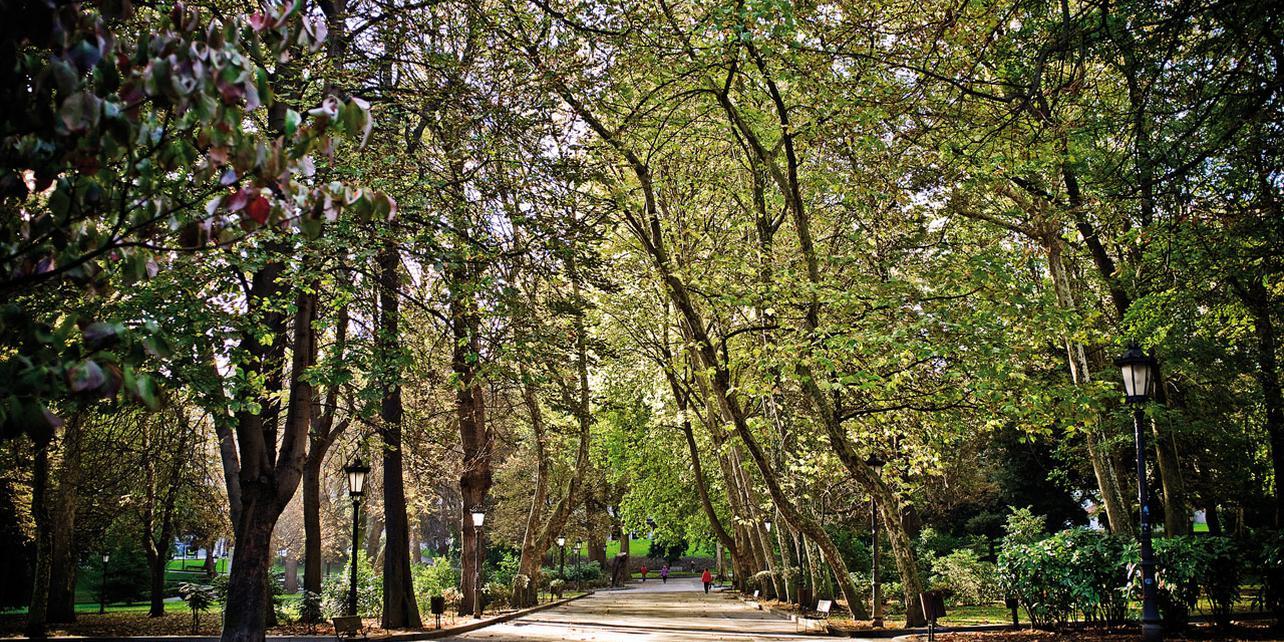 Parque San Francisco