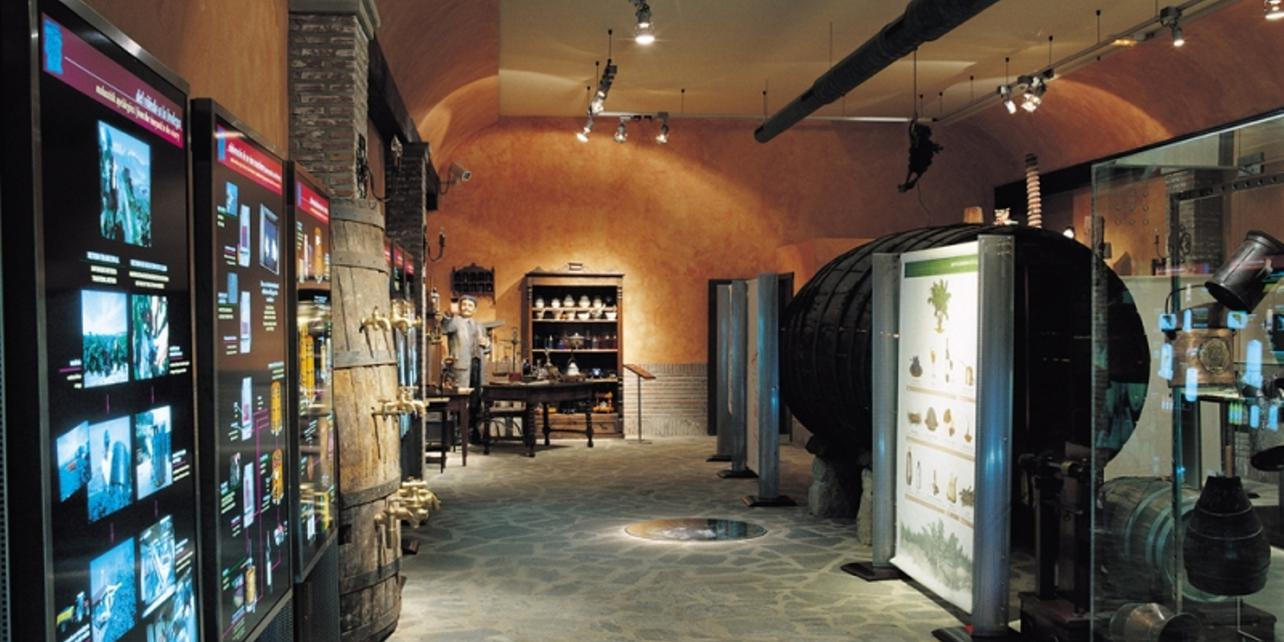 Centro temático del Vino Villa Lucía