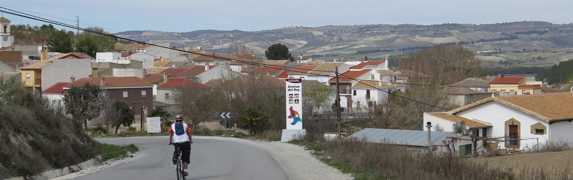Arenas del Rey
