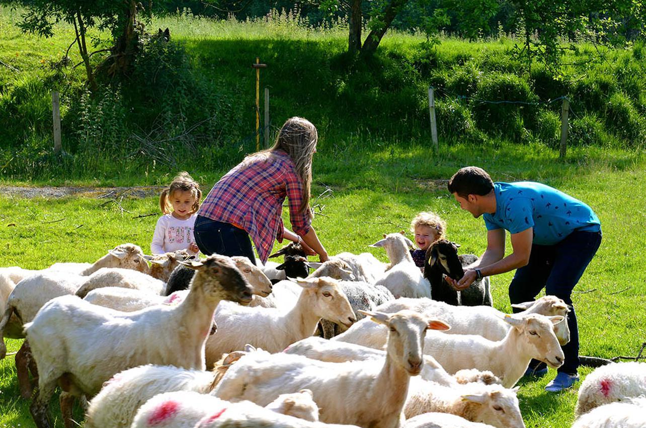 Los niños y mayores pueden dar el biberón a los corderitos. Foto cedida por Alluitz Natura.
