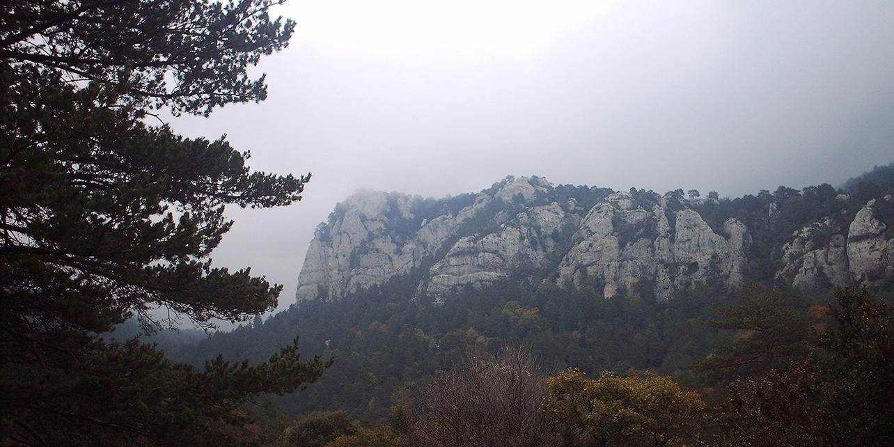 Monte l'Albea