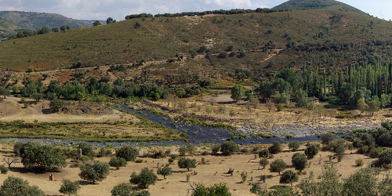 Paraje serrano de Colmenar de Montemayor