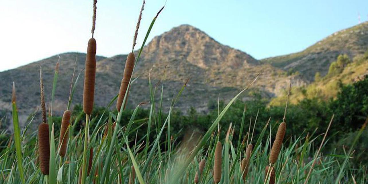 Parque Natural Sot de Chera