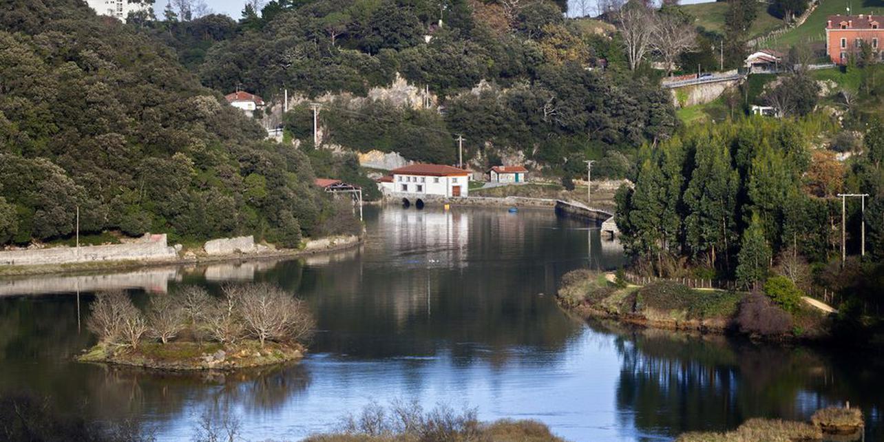 Marismas del río Lea
