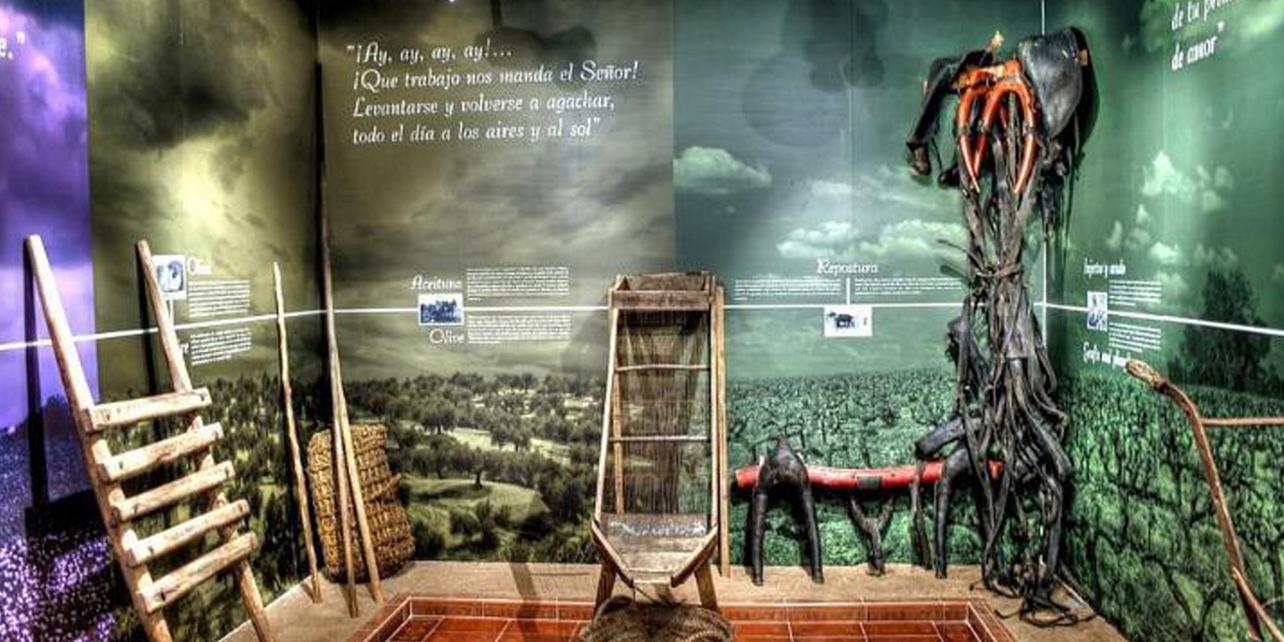 Museo La Rosa del Azafrán