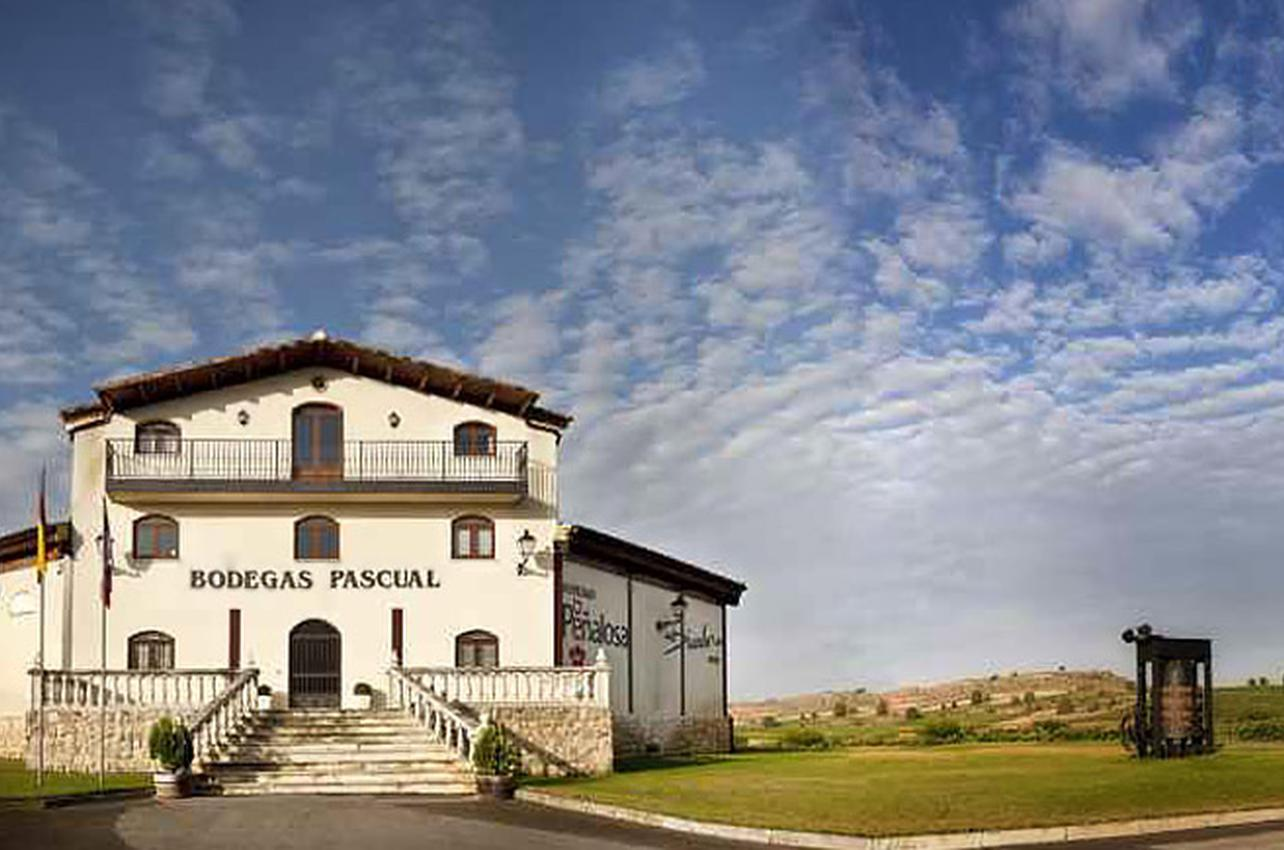 Bodegas Pascual