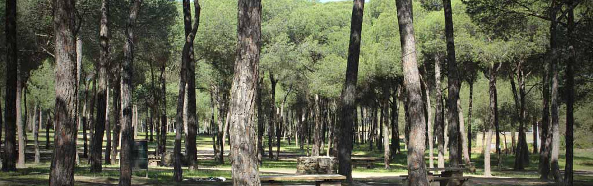 "Paraje Natural ""El Corchito"""