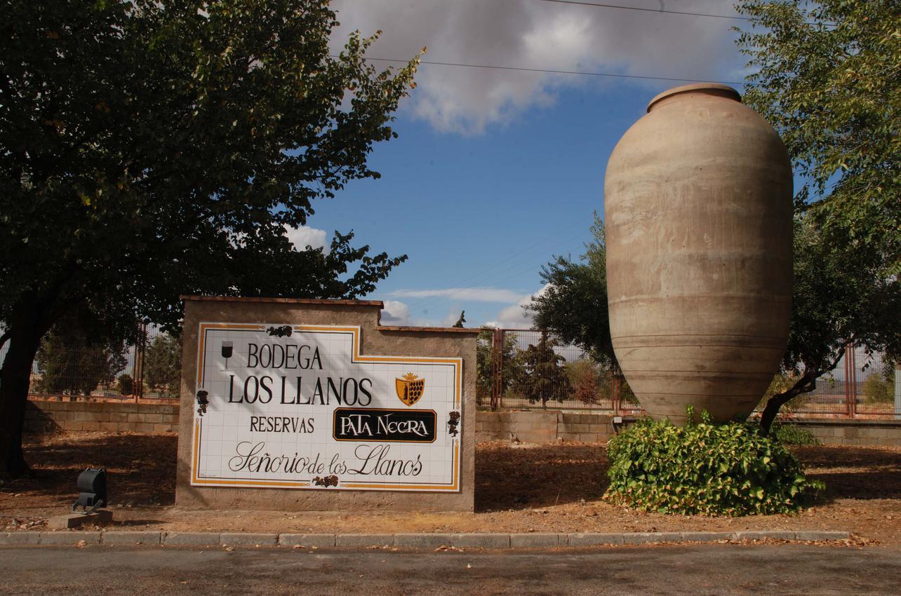 Bodegas Los Llanos (Grupo de Bodegas Vinartis, S.A)