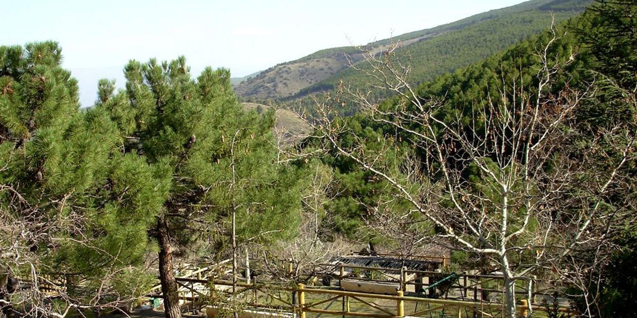 Área Recreativa La Roza (Parque Natural Sierra Nevada)