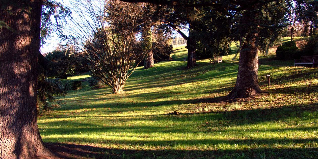 Parque botánico de Txomenane