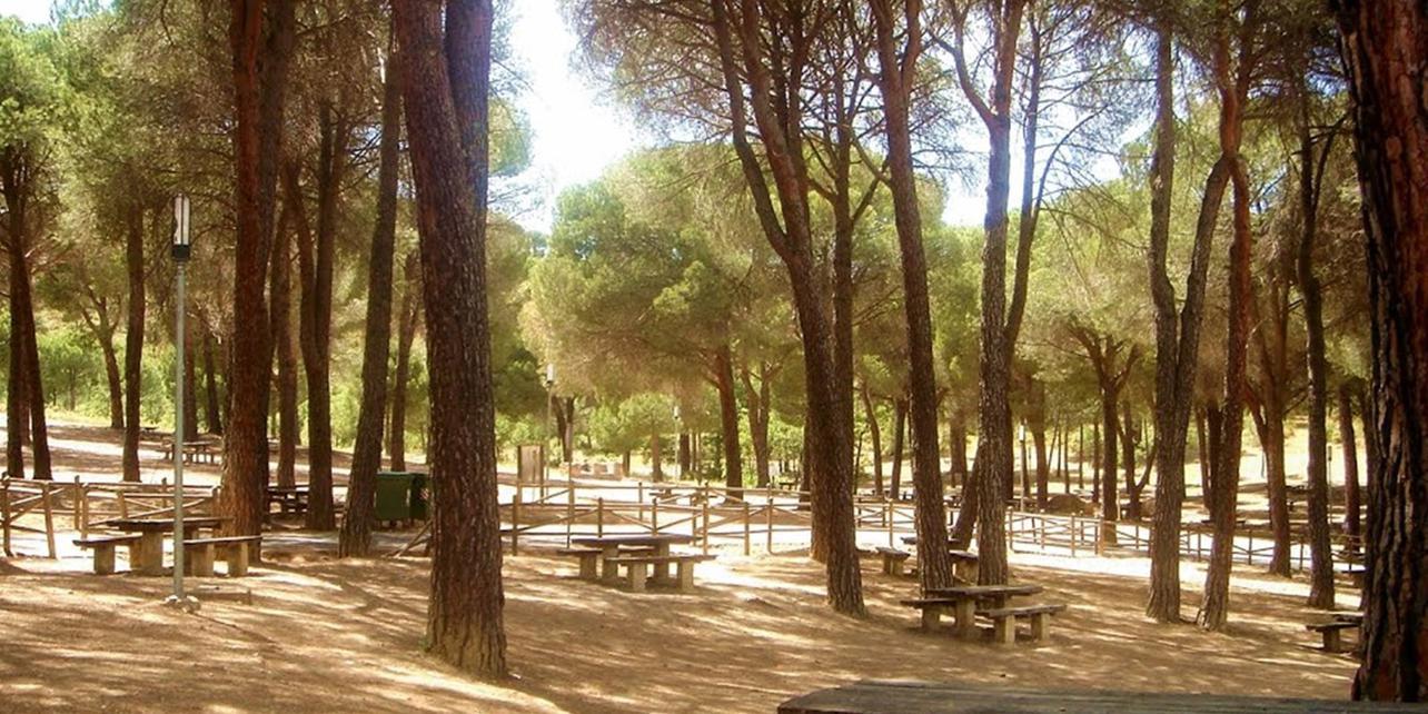 Parque Forestal del Valle de los Perales