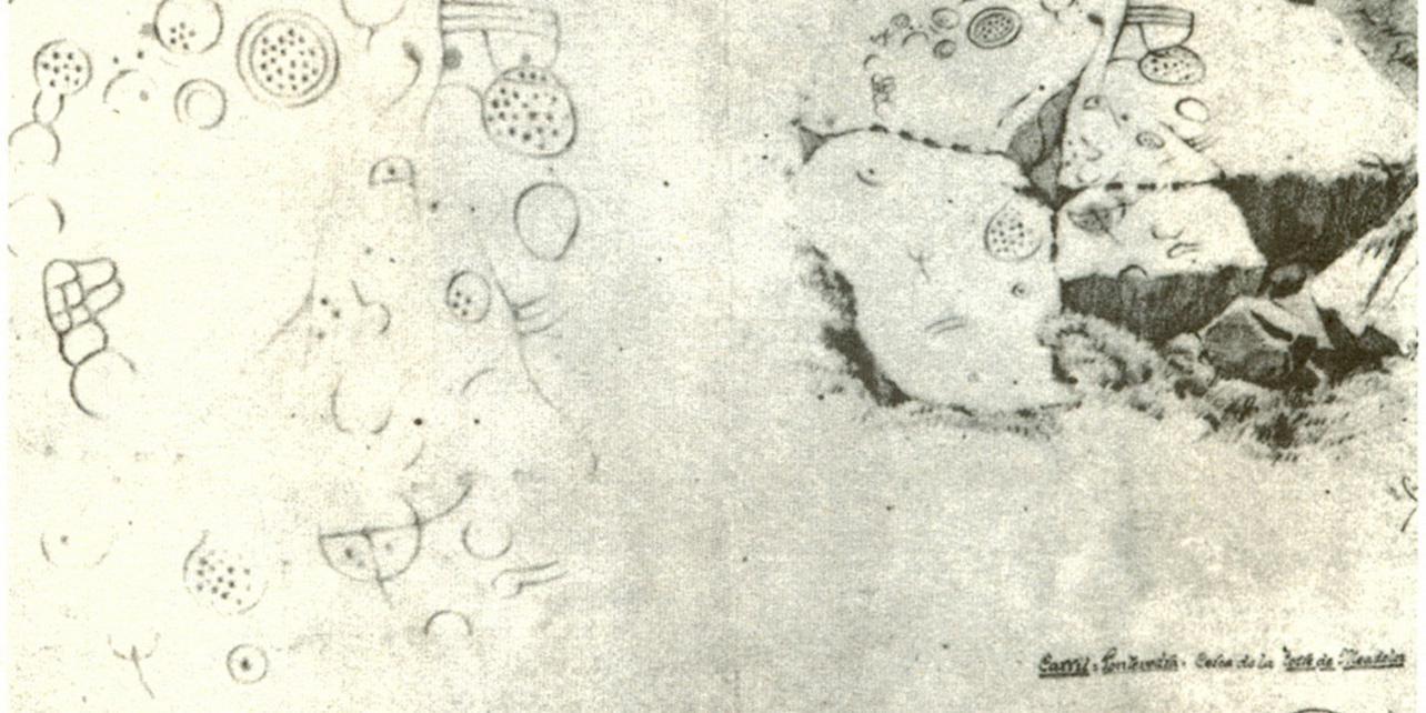 Petroglifos de Os Ballotes