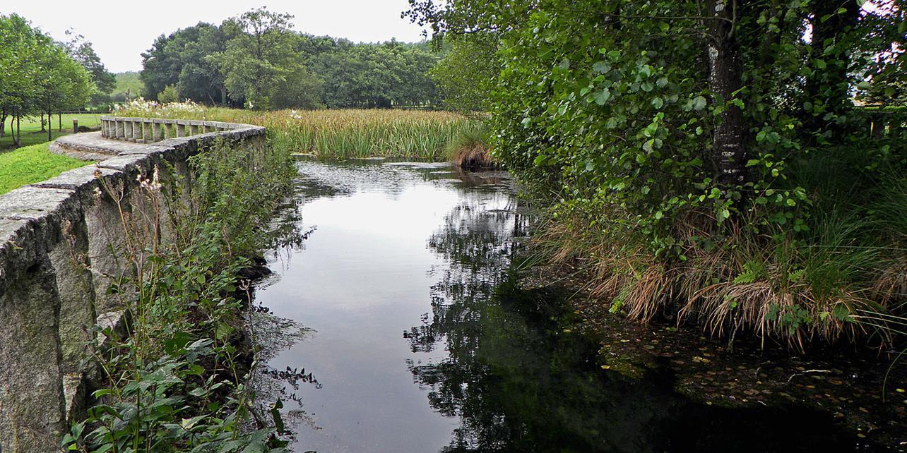 Nacimiento del río Miño (Laguna de Fonmiñá)