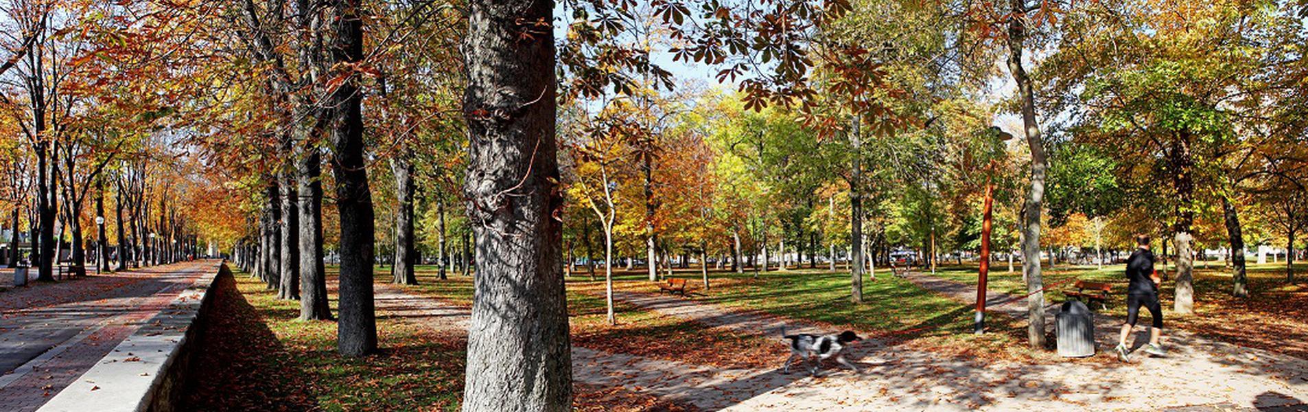 Parque Natural El Prado