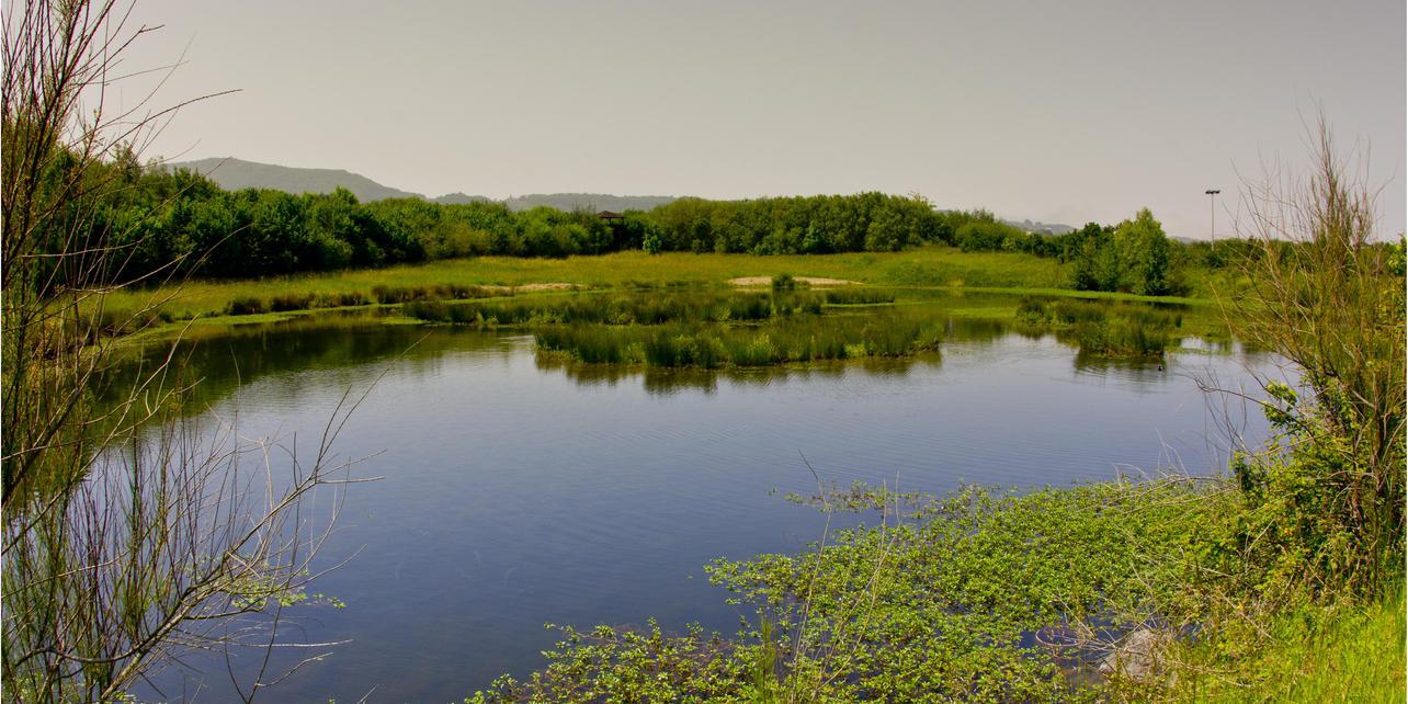 Parque ornitológico Plaiaundi