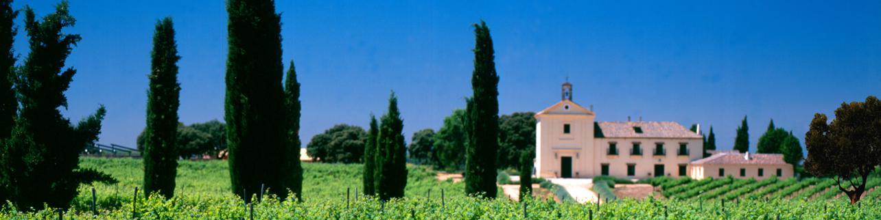Marques de Griñón Family Estates S.A.