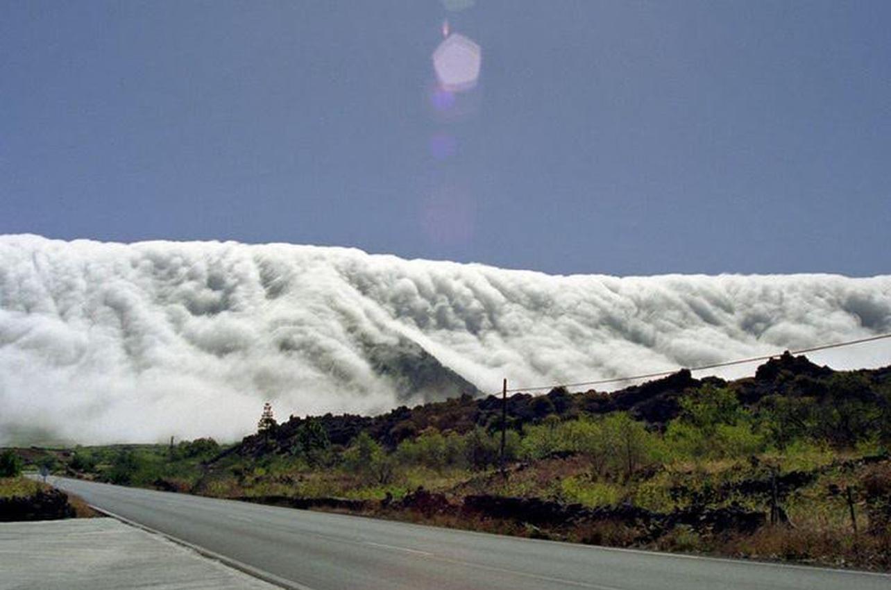 Orientación en la naturaleza en La Palma