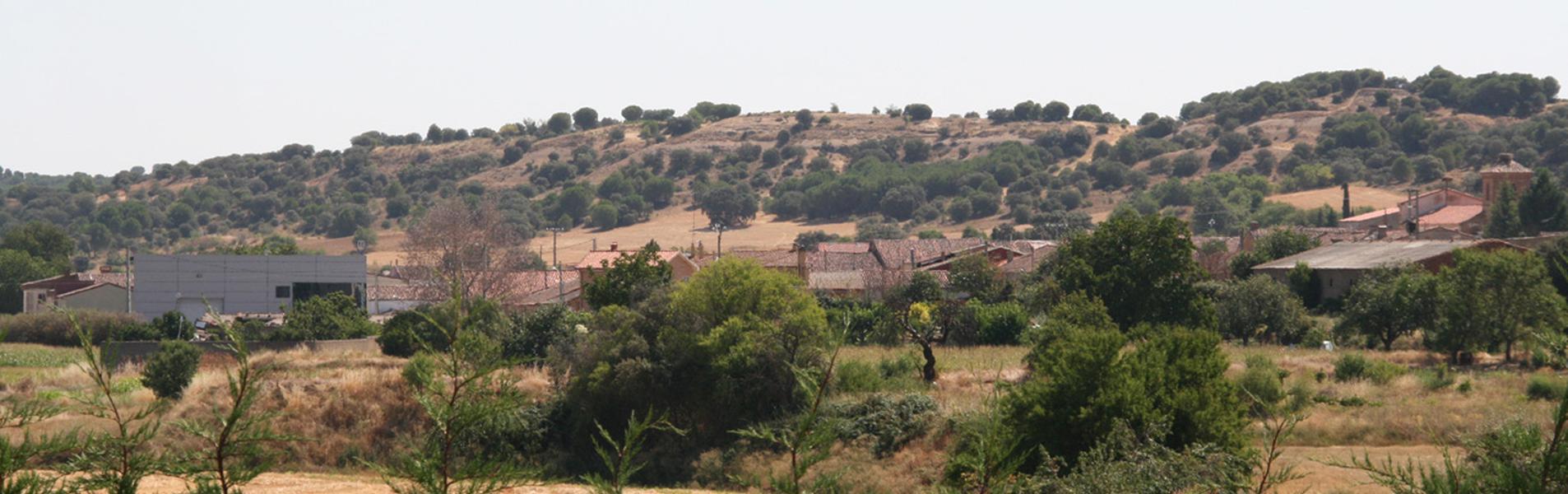 Peleagonzalo