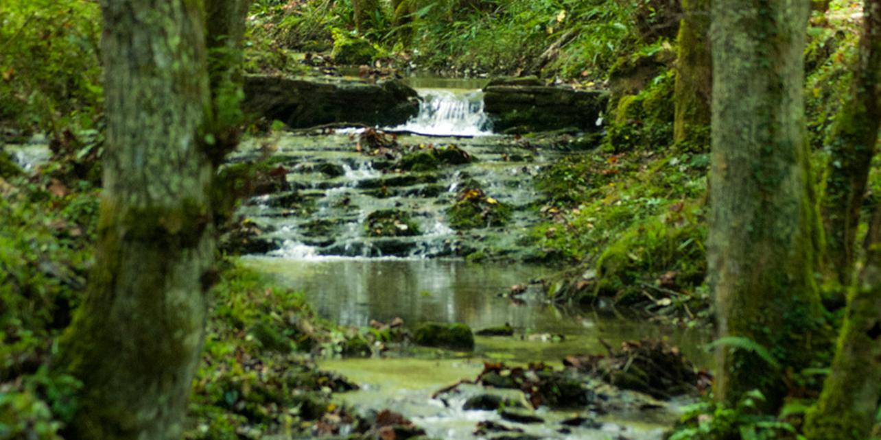 Parque Natural de Pagoeta