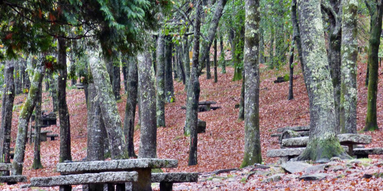 Parque natural de Cotorredondo