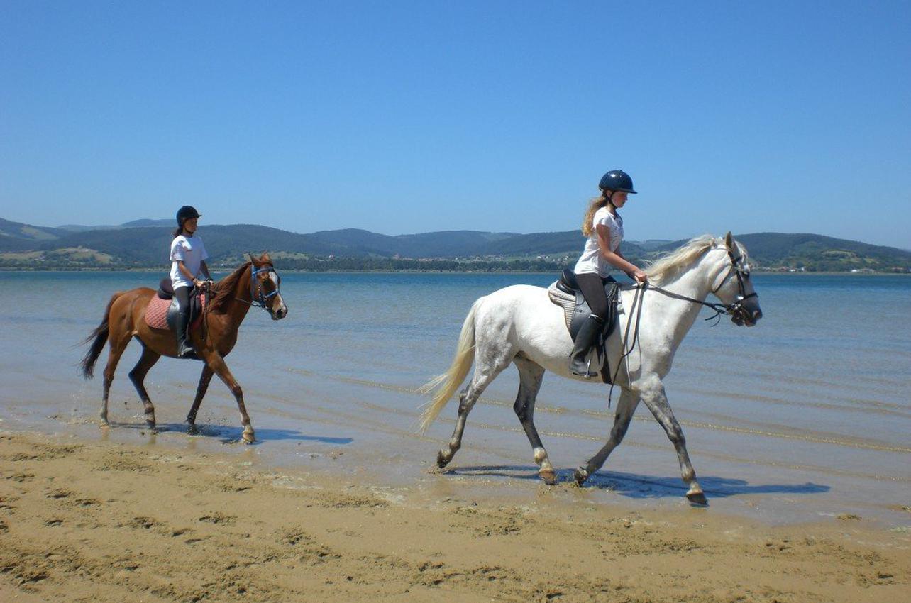 1h de Ruta a Caballo por la playa de Laredo en Cantabria