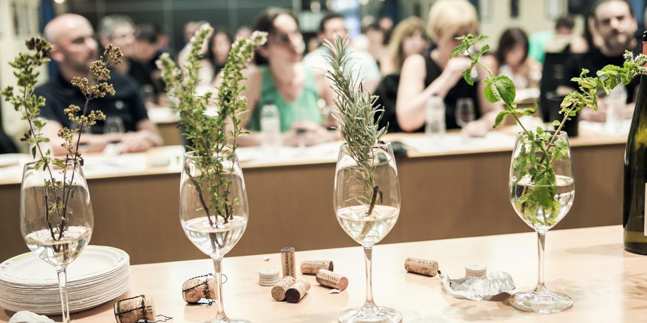 Muestra Gastronómica y Festival del Vino Somontano