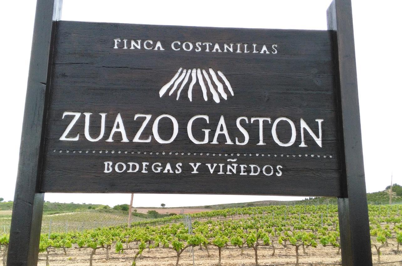Bodegas y Viñedos Zuazo Gastón
