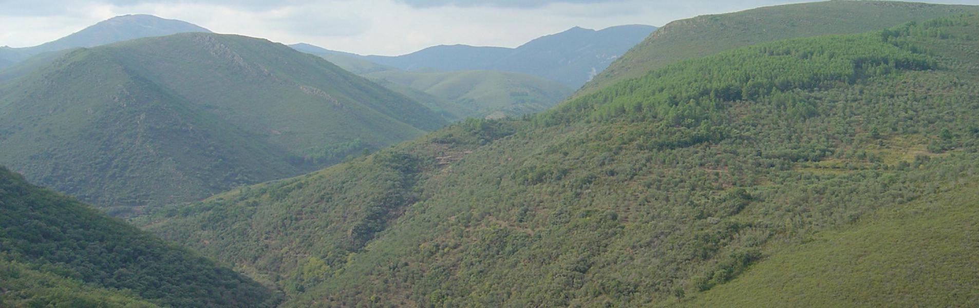 Aldeanueva de la Sierra