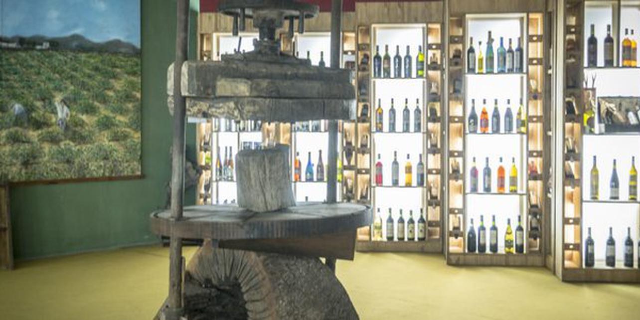 Museo del aceite andaluz