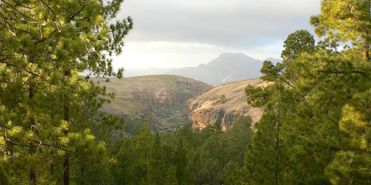 Parque Natural de Ojeda, Inagua y Pajonales