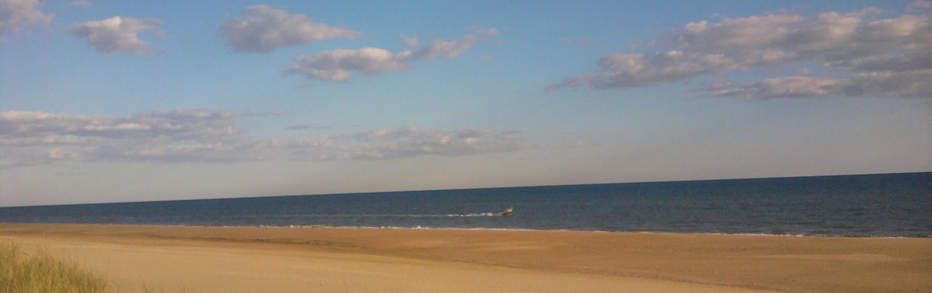 Paraje Natural de las Marismas del Rio Piedras y Flecha de Nueva Umbría