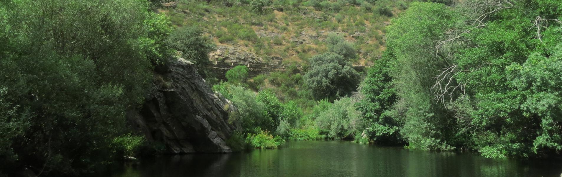 Alagón del Río