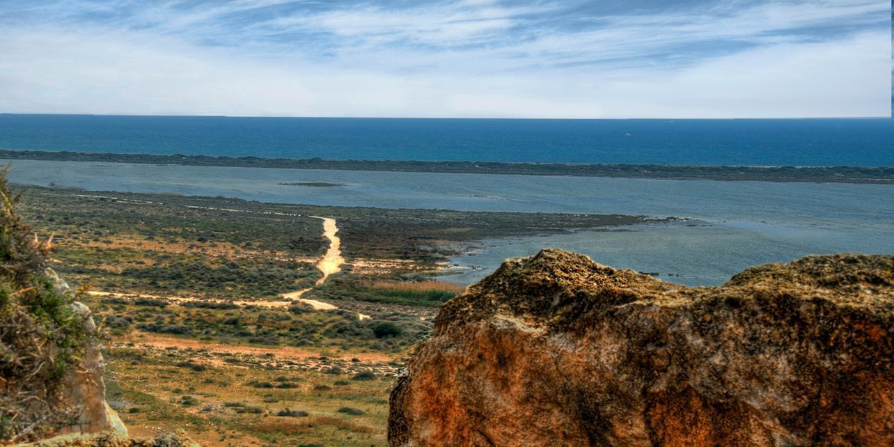 Paraje Natural Punta Entinas-Sabinar