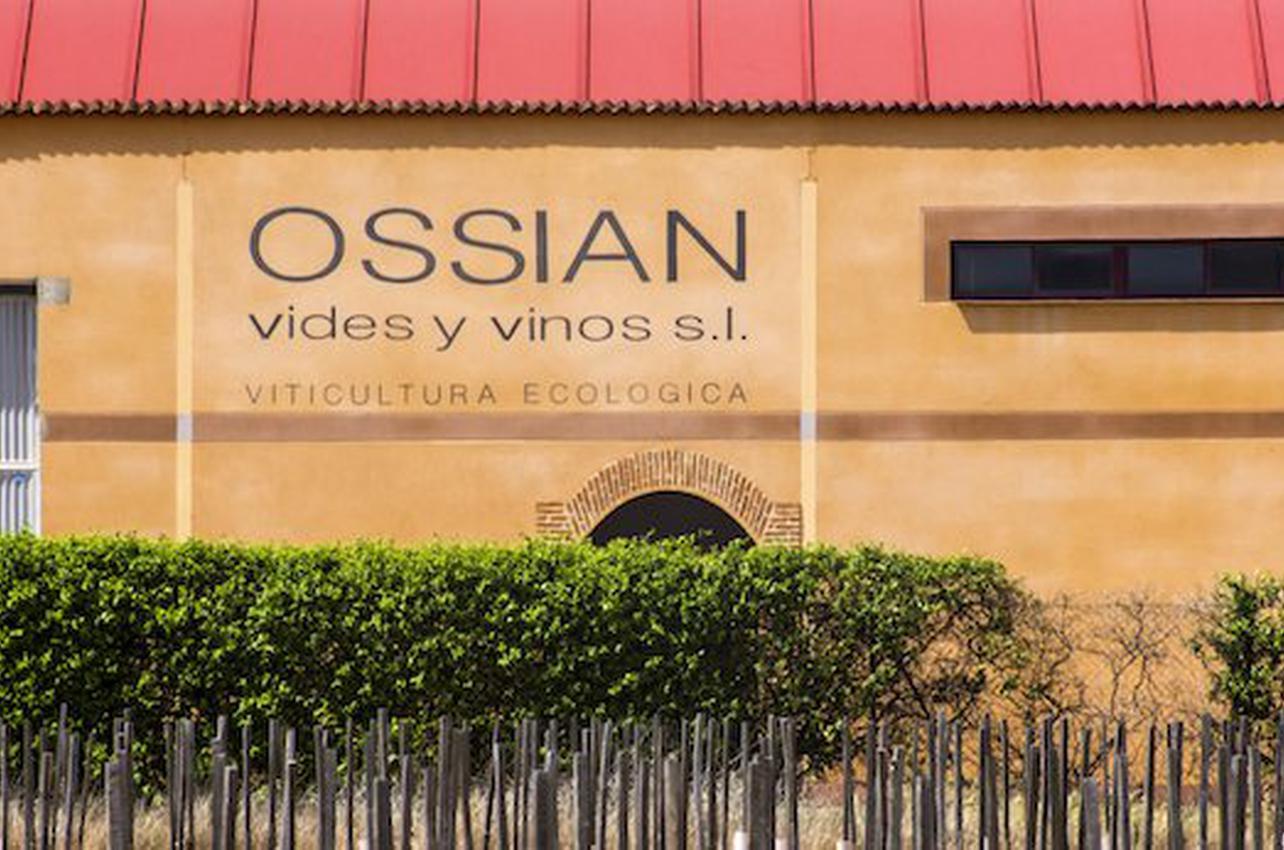 Ossian Vides y Vinos