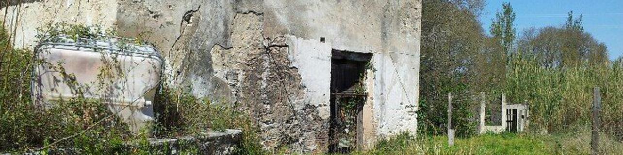 Molino Coví, atrévete a descubrir los tesoros del rio Girona