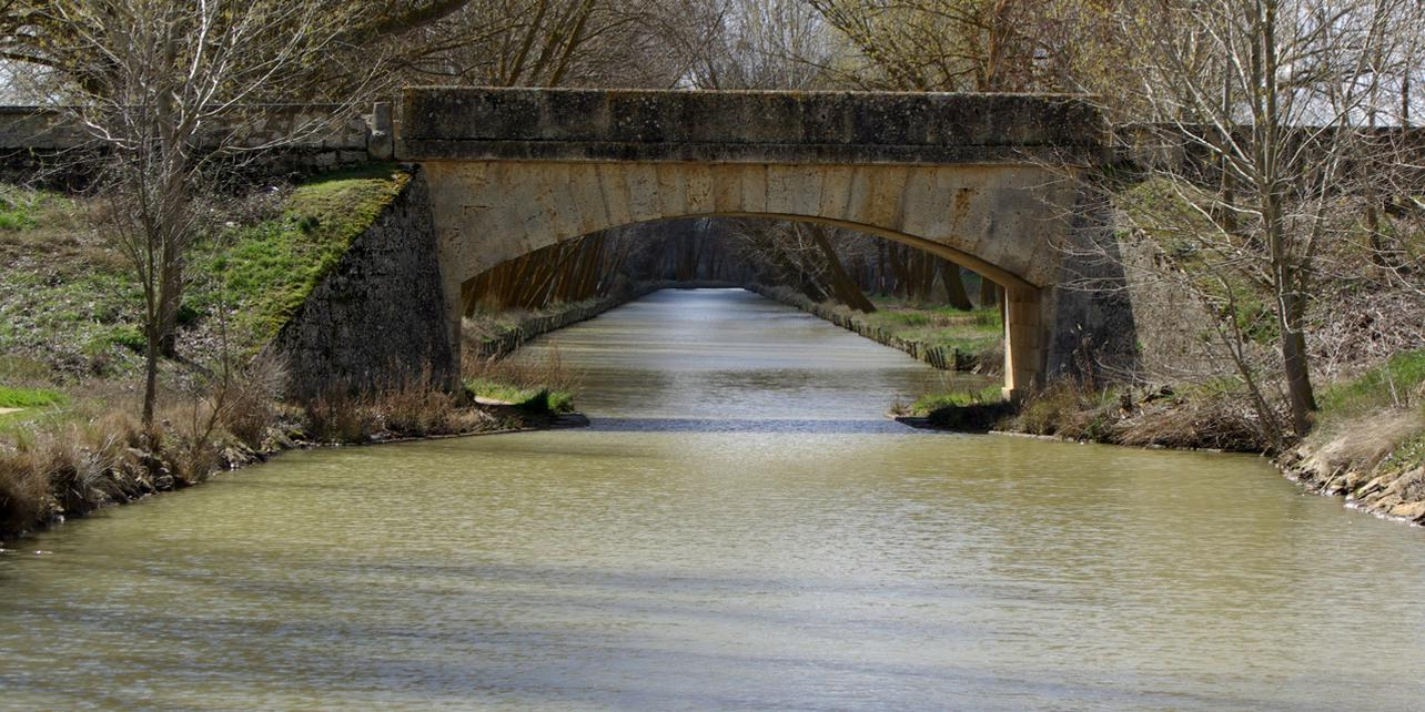 Canal de Castilla: Ramal de Campos