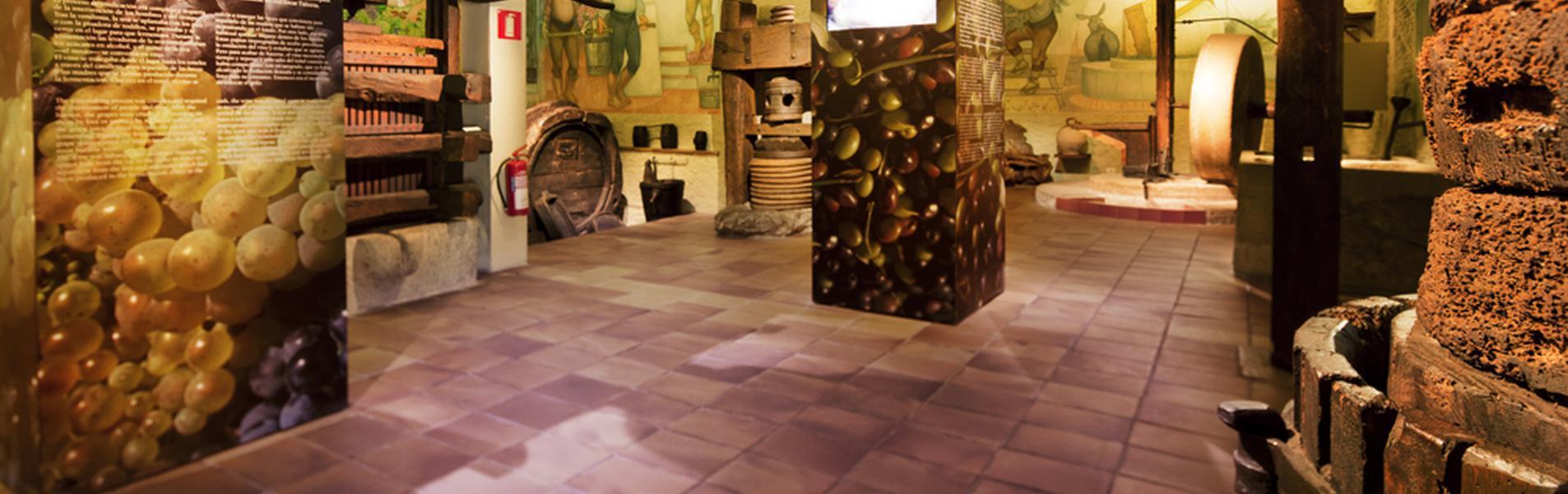 Museo de la Vida Rural