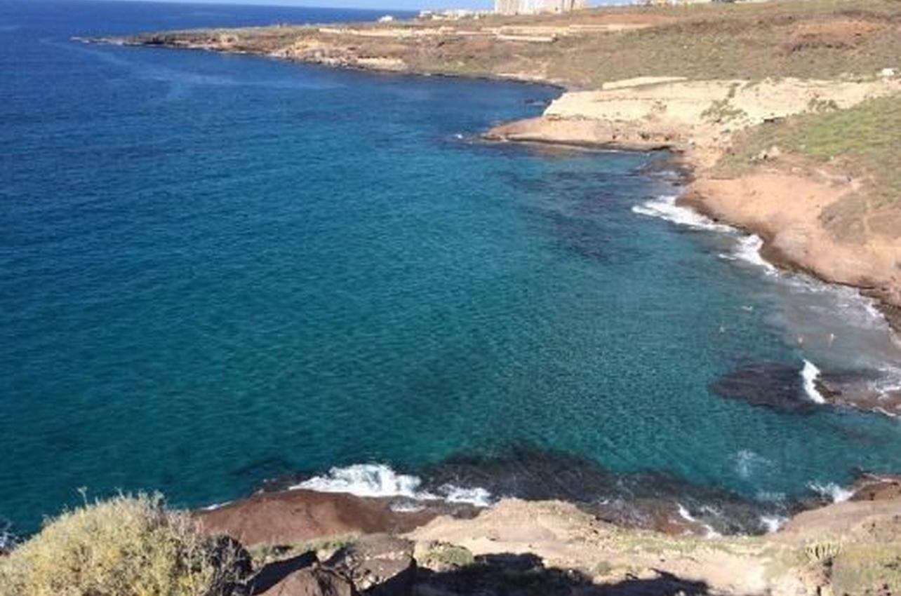 Observación de peces en Tenerife