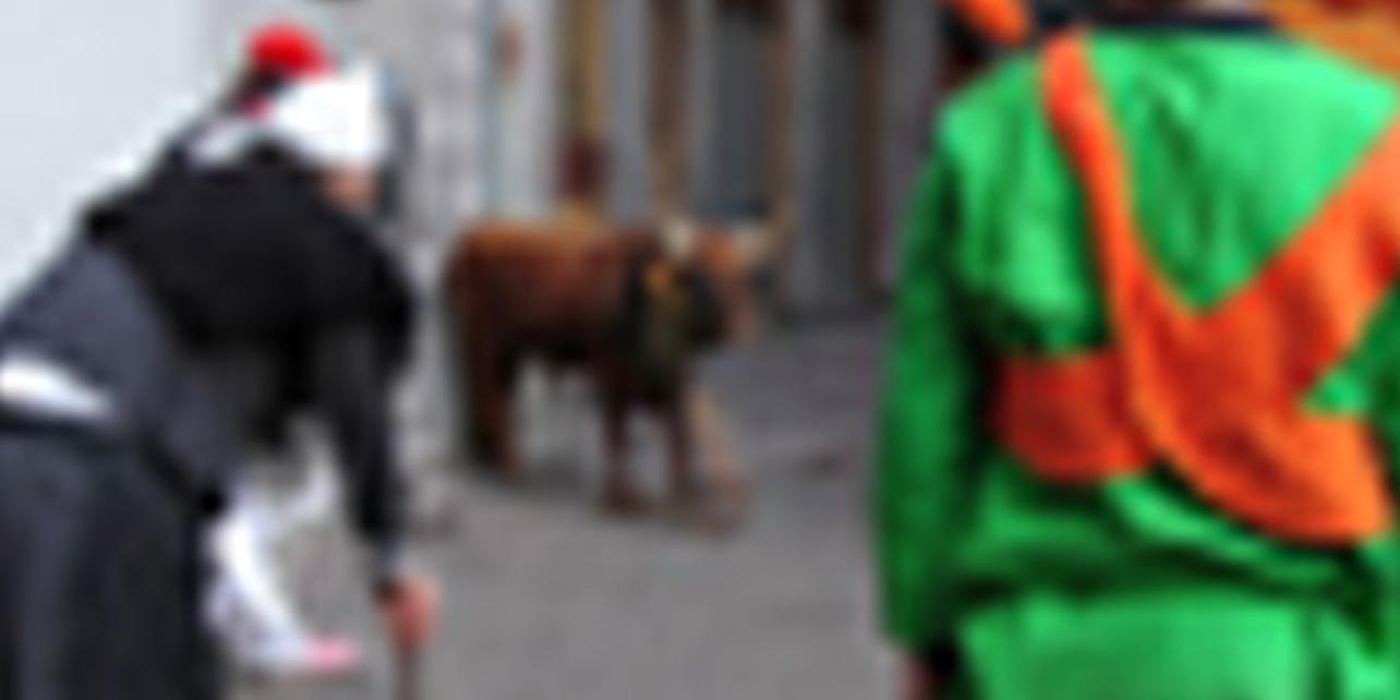 Carnaval de Azpeitia